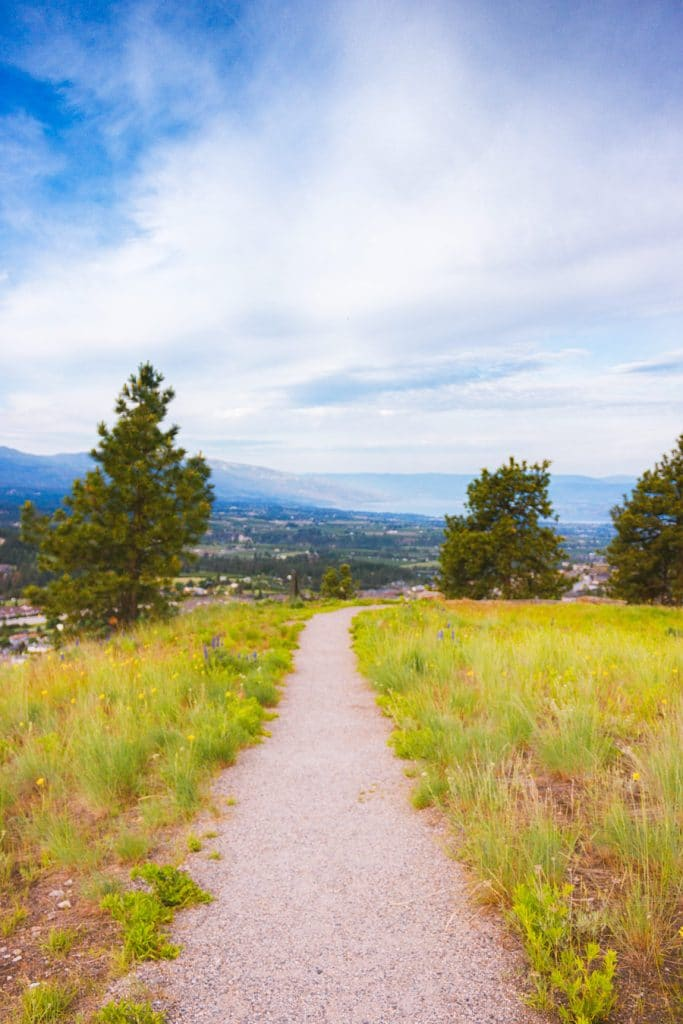 The wide open field at the summit of the Black Mountain Viewpoint hike in Kelowna