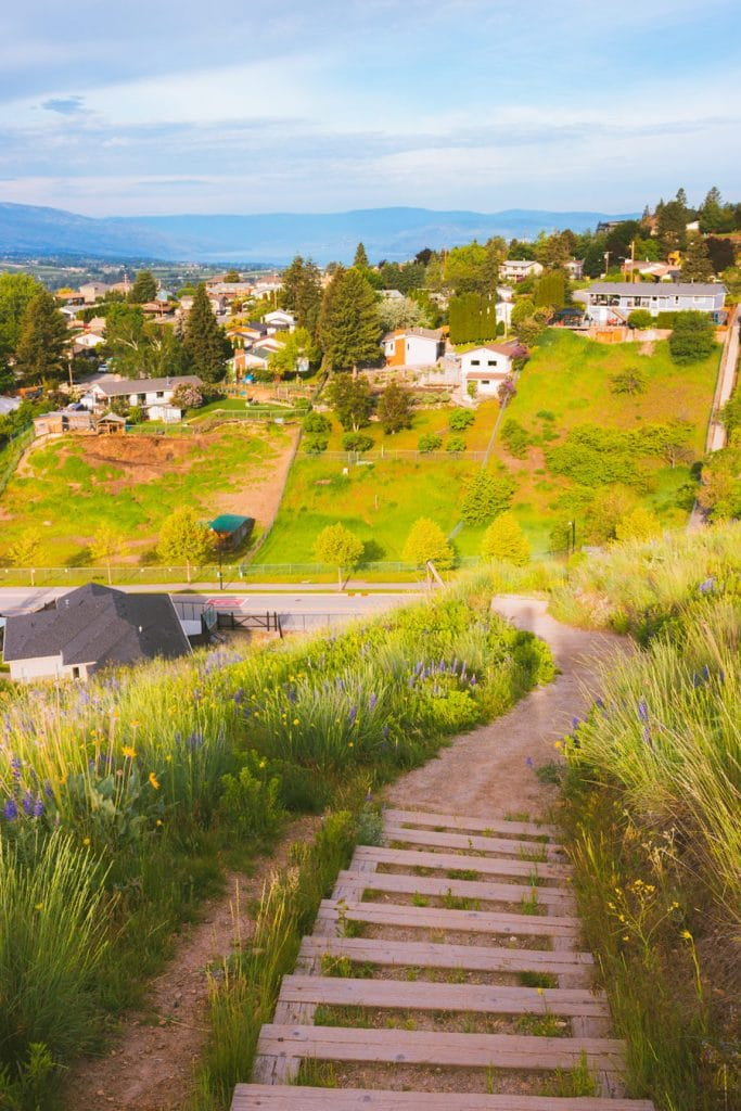 A set of stairs heading downhill on a hiking trail in Kelowna, BC