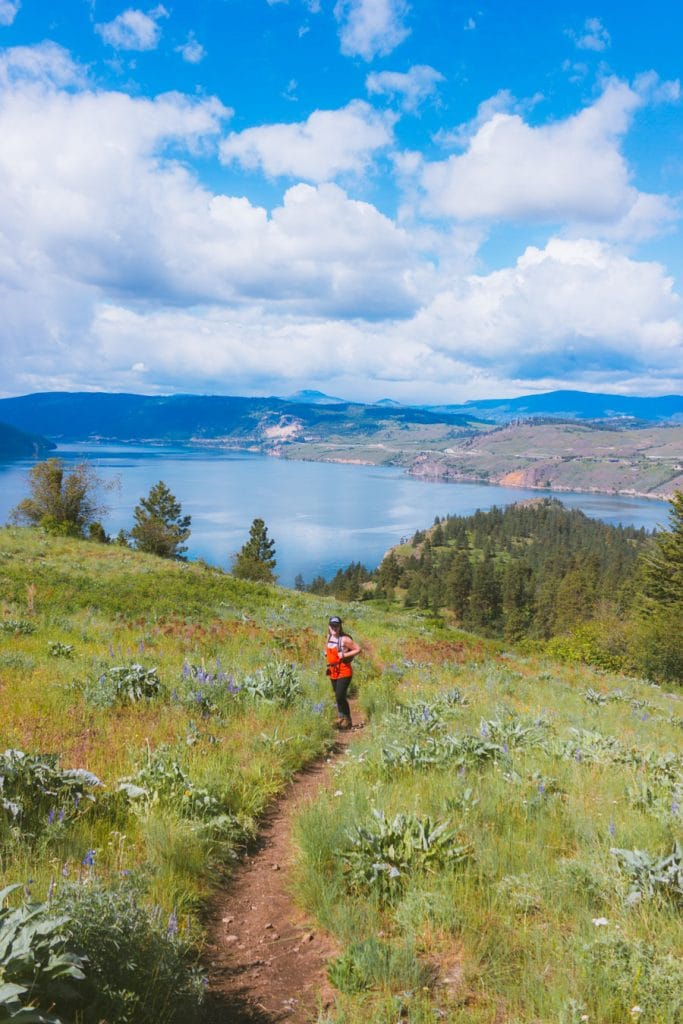 Panoramic view of Kalamalka Lake from the hiking trails in the provincial park near Vernon, BC