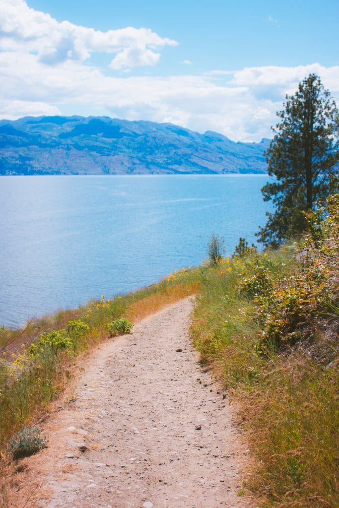 View of Okanagan Lake from the hiking trails at Kalamoir Regional Park in West Kelowna