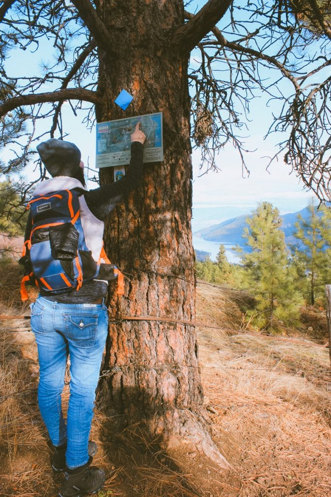 Reading a trail map at the North Overlook at Spion Kop