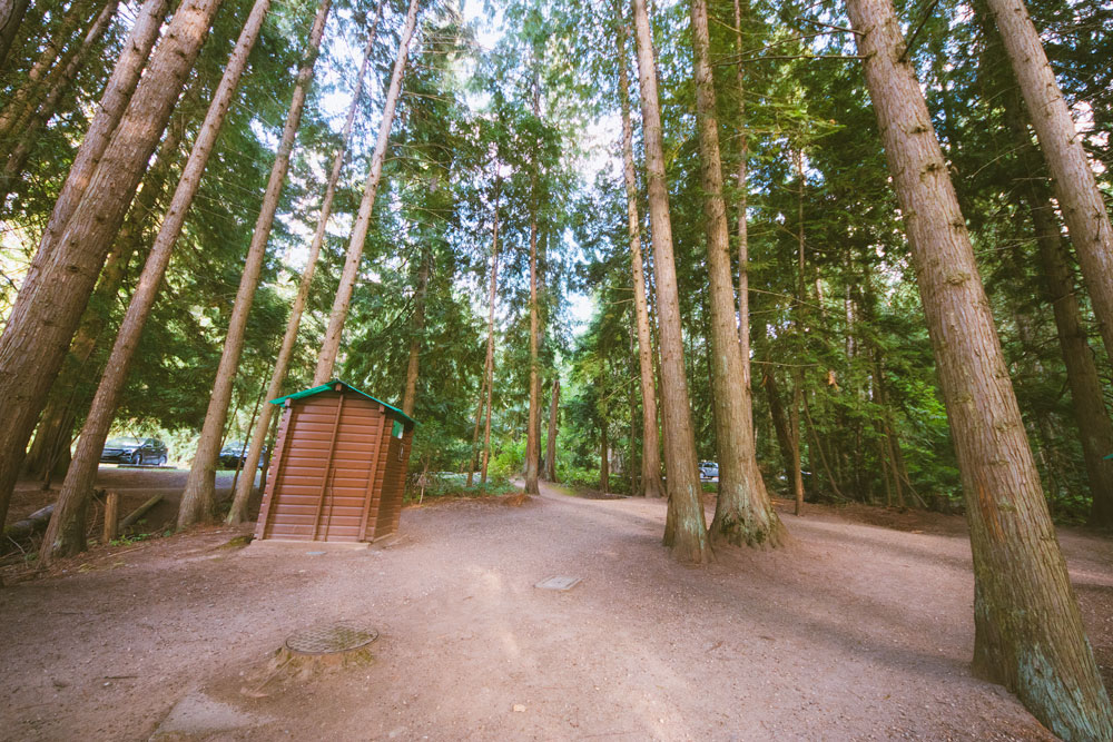 The forest and outhouse at Mara Provincial Park