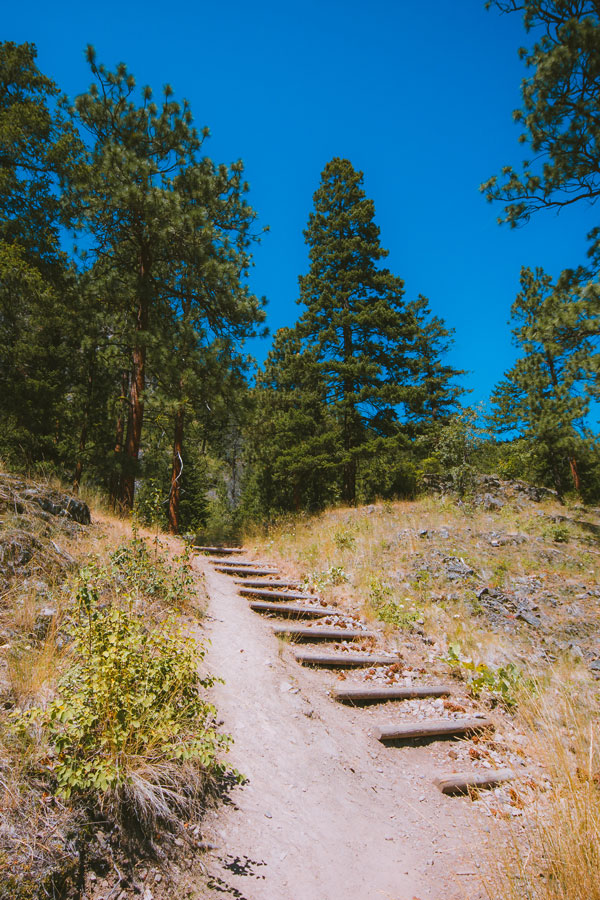 Stairs on the uphill climb on Pincushion Mountain in Peachland