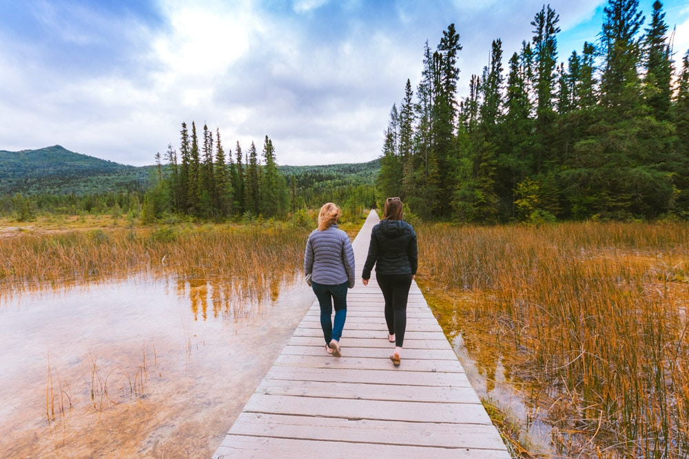 Boardwalk through warm swamp waters to the Liard Hot Springs