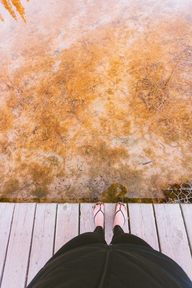 Boardwalk to the hot springs at Liard River campground