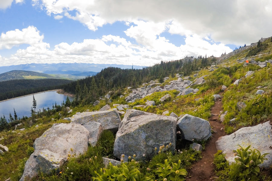 A hiking trail through the alpine forest at Big White with panoramic views of the surrounding mountains.