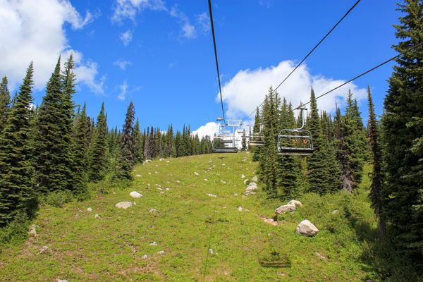 A grassy ski hill at Big White in the summer.