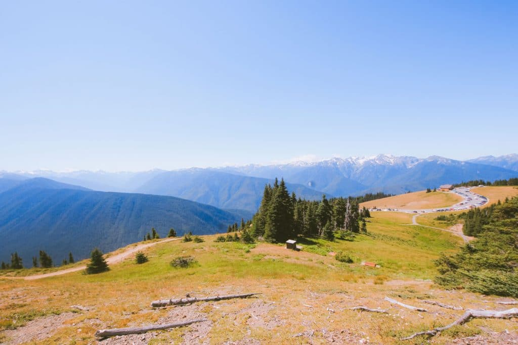View towards Hurricane Ridge Visitor Centre from the Sunrise Trail