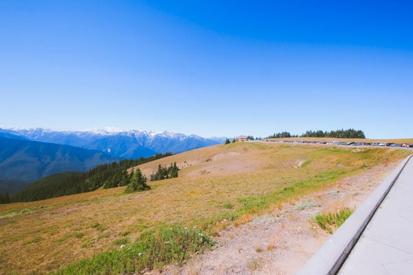 A look towards the Hurricane Ridge Visitor Center from the parking lot at the top of the hill.