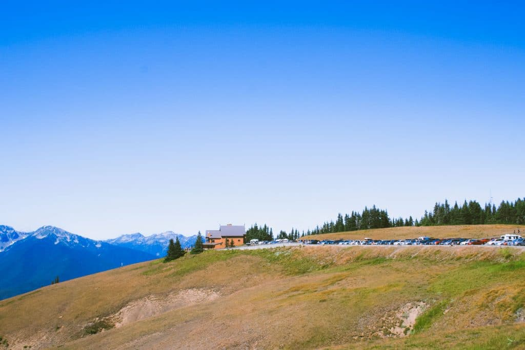 A panoramic view of the parking lot and Hurricane Ridge Visitor Center on a green hill and snow-capped mountains.
