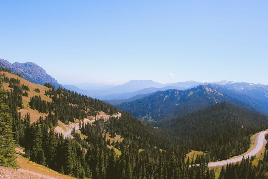 View down the Olympic mountain range with a road winding through the thick, green forest.
