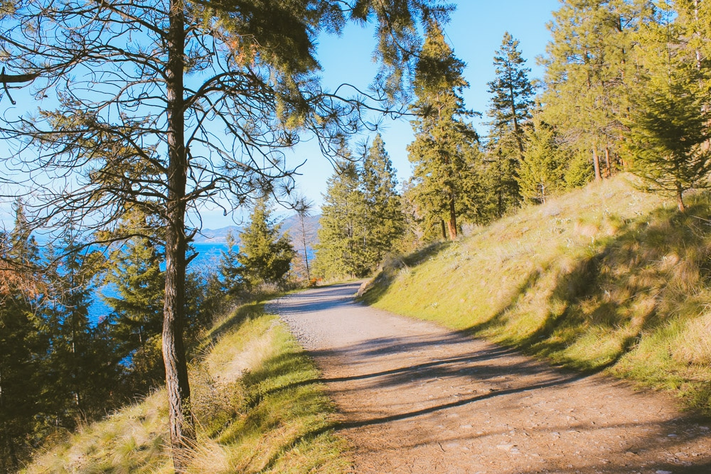Sunny hiking trail near Kelowna, Okanagan.