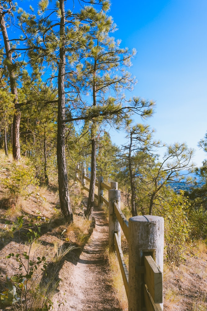 Trail along the fence at Dilworth Mountain Park in Kelowna