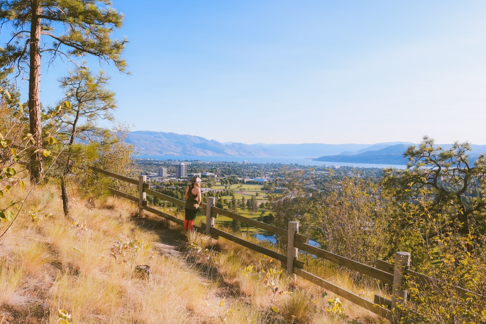 Fenced hiking trail at Dilworth Mountain Park with beautiful views of Kelowna
