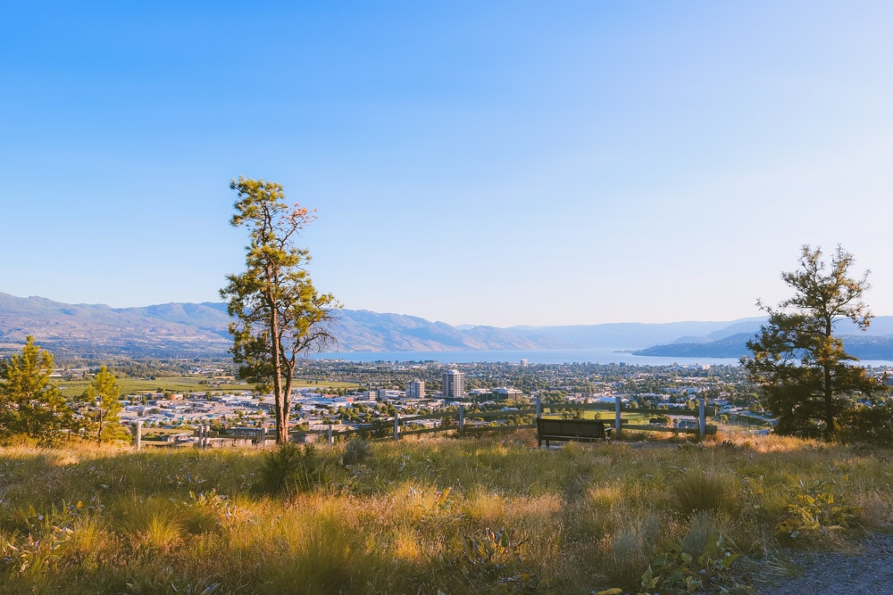 Stunning view of the Okanagan Valley from an easy hiking trail in Kelowna