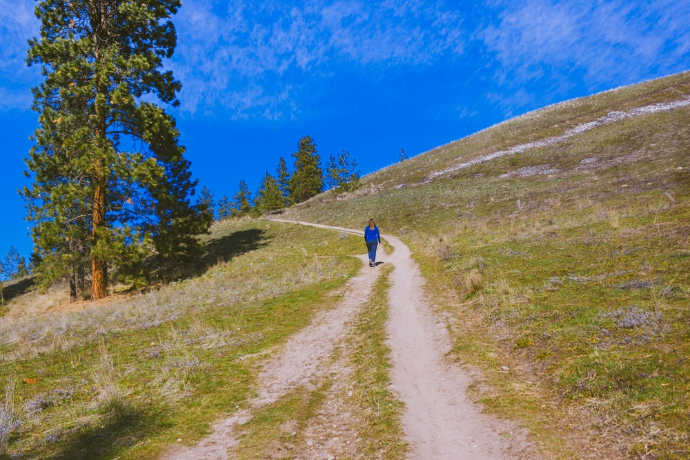 Woman hiking up the west side of Mt Baldy