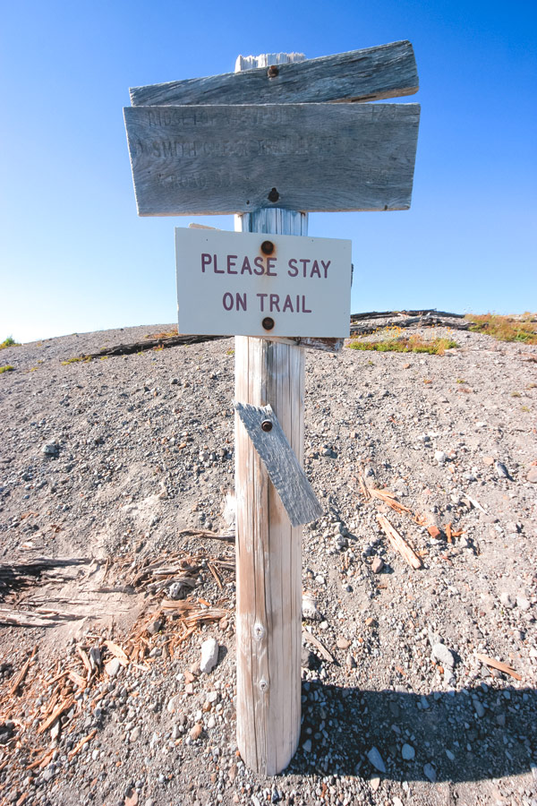 A 'Stay on Trail' sign at the top of the sandladder at Windy Ridge Viewpoint.
