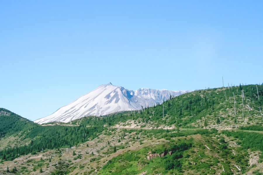 View of Mt St Helens on the drive up to Windy Ridge Viewpoint.