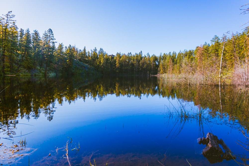 Mirror-like water on Kathleen Lake on Knox Mountain, surrounded by trees