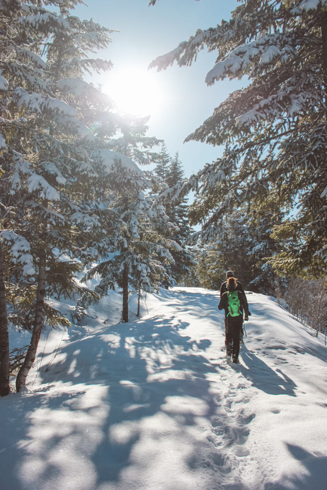Snowshoeing through a snow covered forest in Kelowna