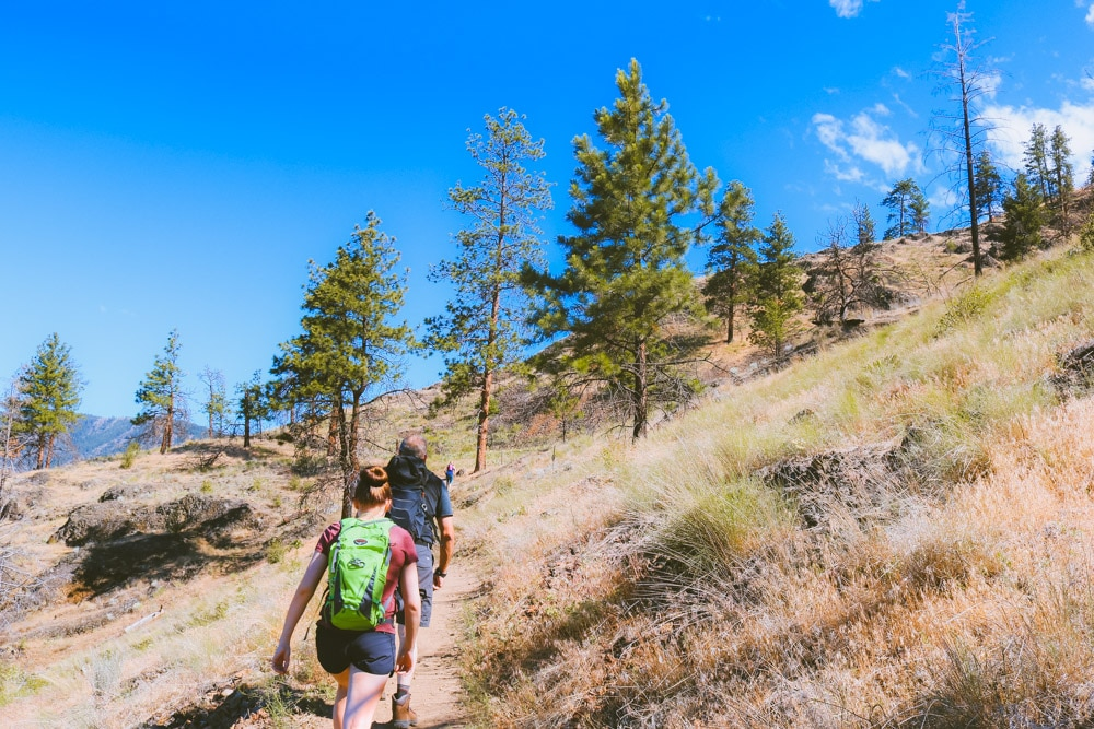 A group of people hiking up the Boucherie Rush Trail on Mt Boucherie in West Kelowna