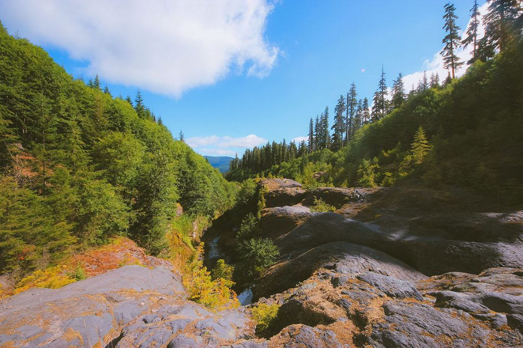 A rocky, forested canyon trail