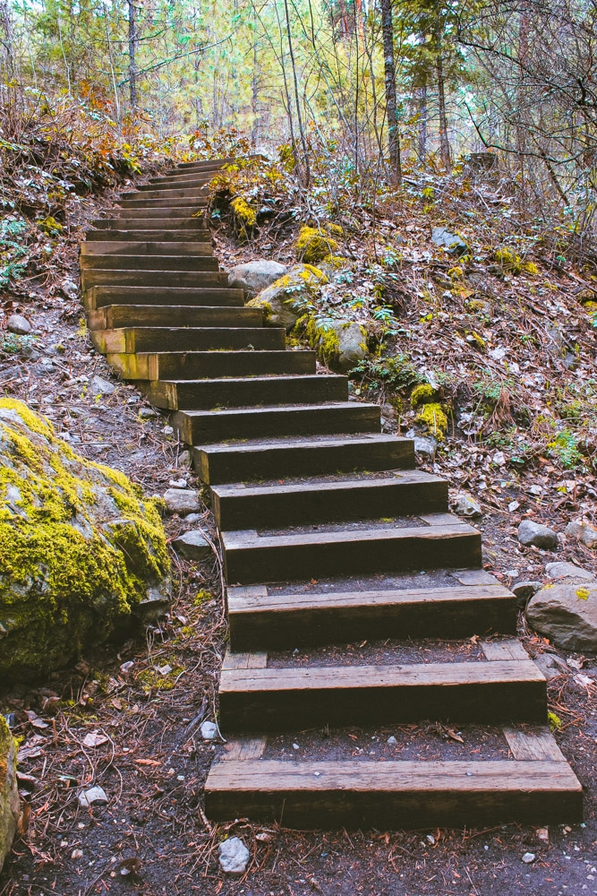A curved set of wooden stairs at Mill Creek Regional Park in Kelowna