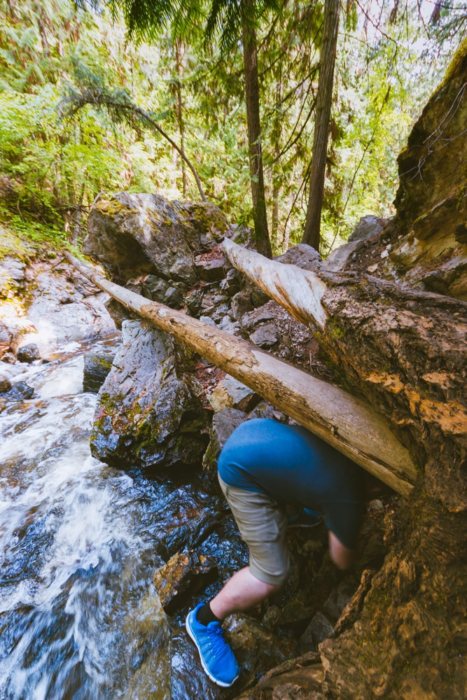 Hiking through a difficult section at Mill Creek Regional Park