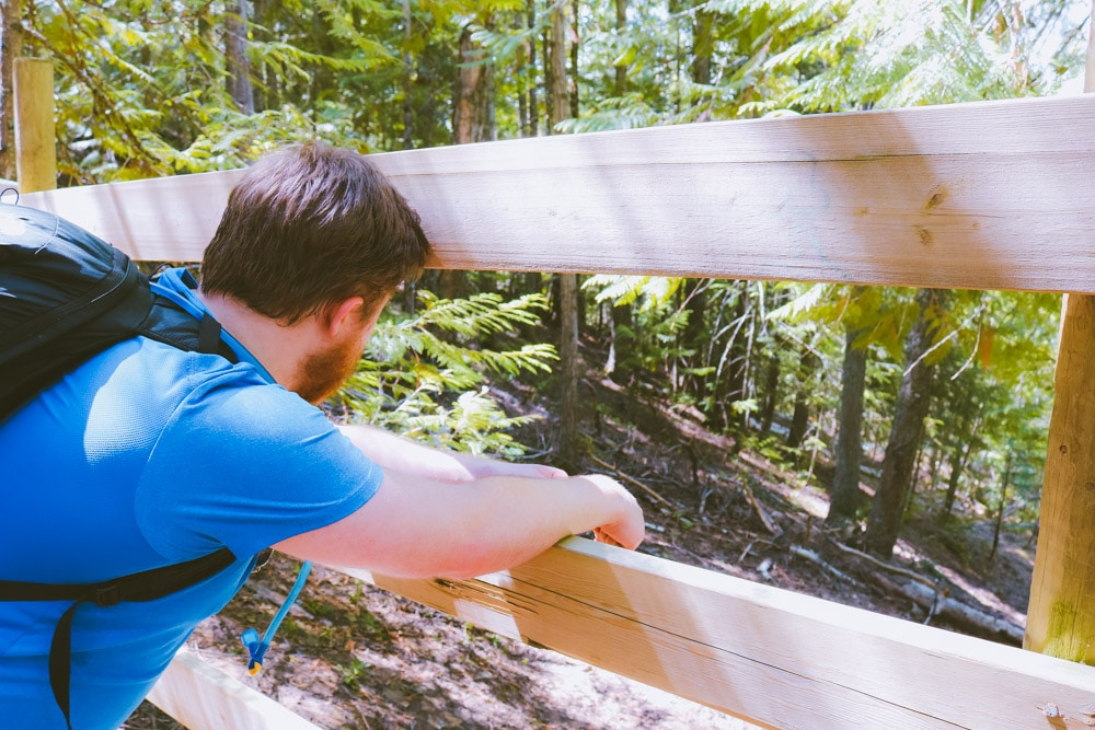 The old trail on the Enderby Cliffs is closed off by a fence