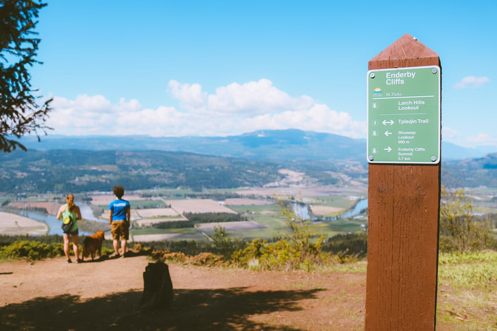 The Shuswap Lookout sign on the Enderby Cliffs trail