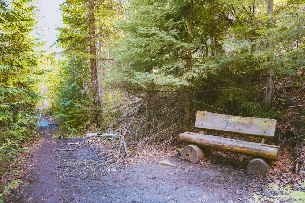 The bench at the Shrine at the Enderby Cliffs