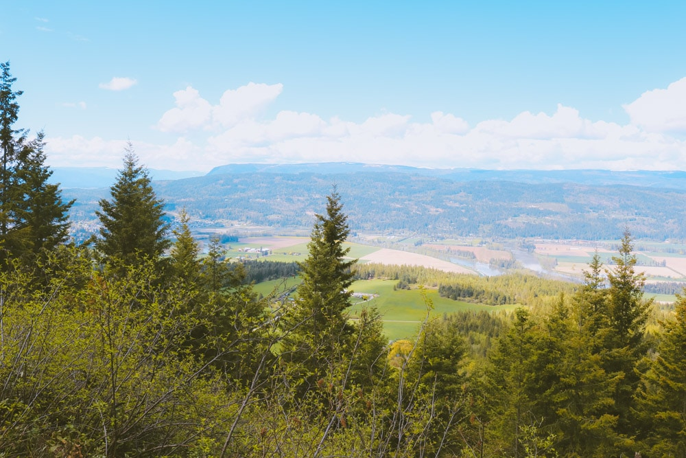 View of the north Okanagan from the Enderby Cliffs trail