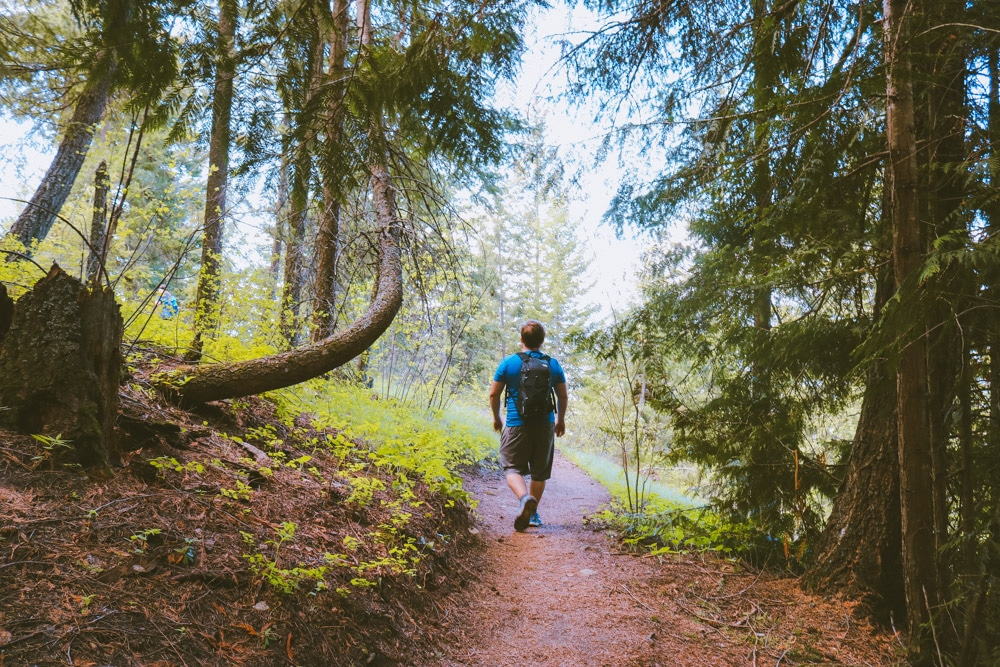 Man hikes on the Enderby Cliffs trail