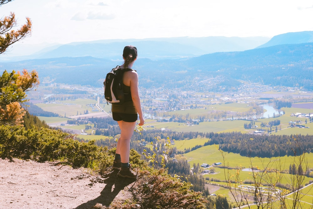 The Larch Hills lookout on the Enderby Cliffs