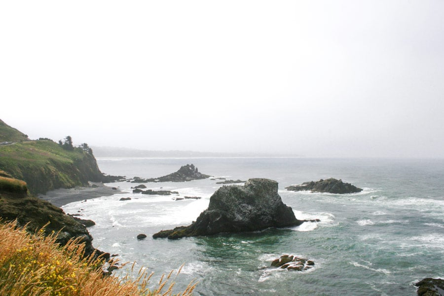 View of the Oregon coast's rugged coastline from the top of the lighthouse tower.