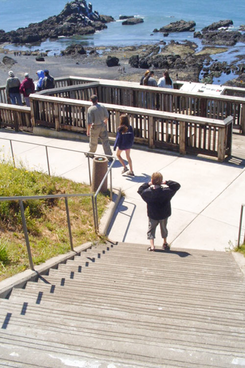 Stairs to the tide pools at the bottom of Yaquina Head Lighthouse.