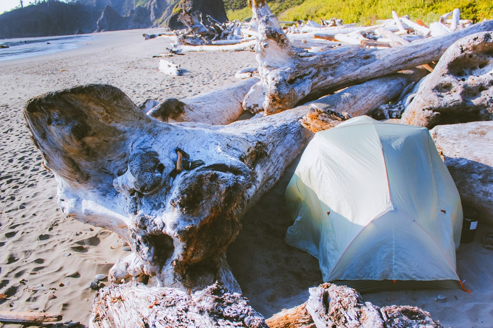 A tent is pitched between driftwood on Second Beach, Washington.