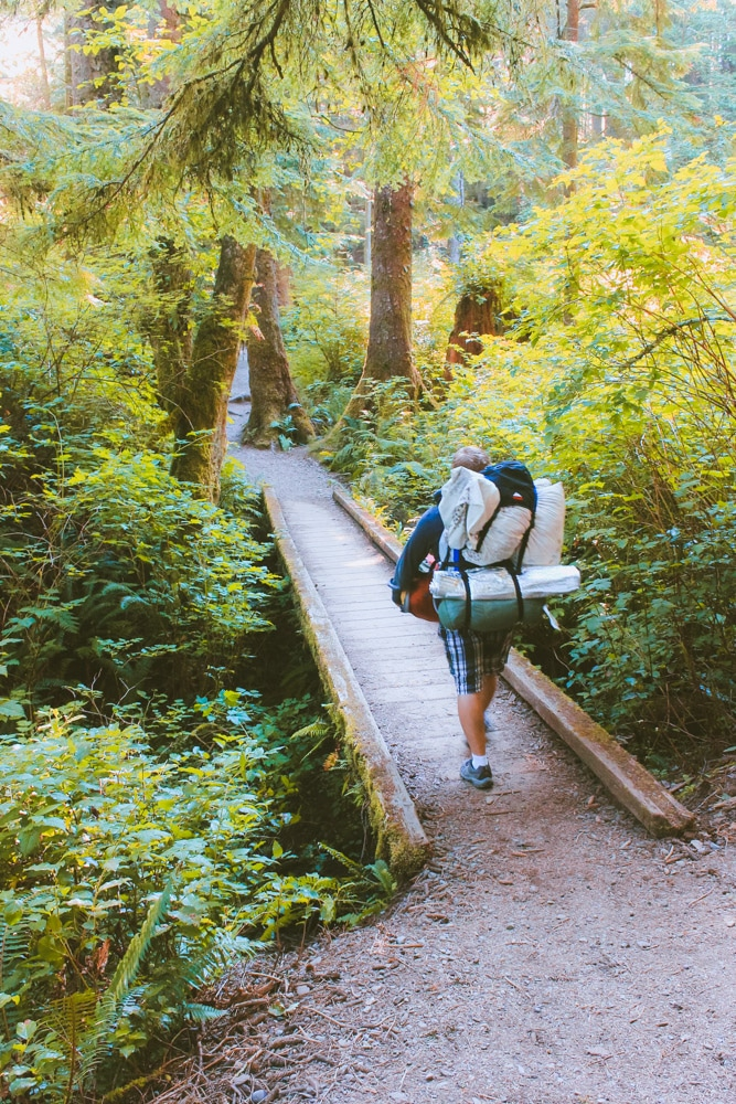 Jacob from Explore the Map walks over a small wooden bridge on a forested trail near Olympic National Park.