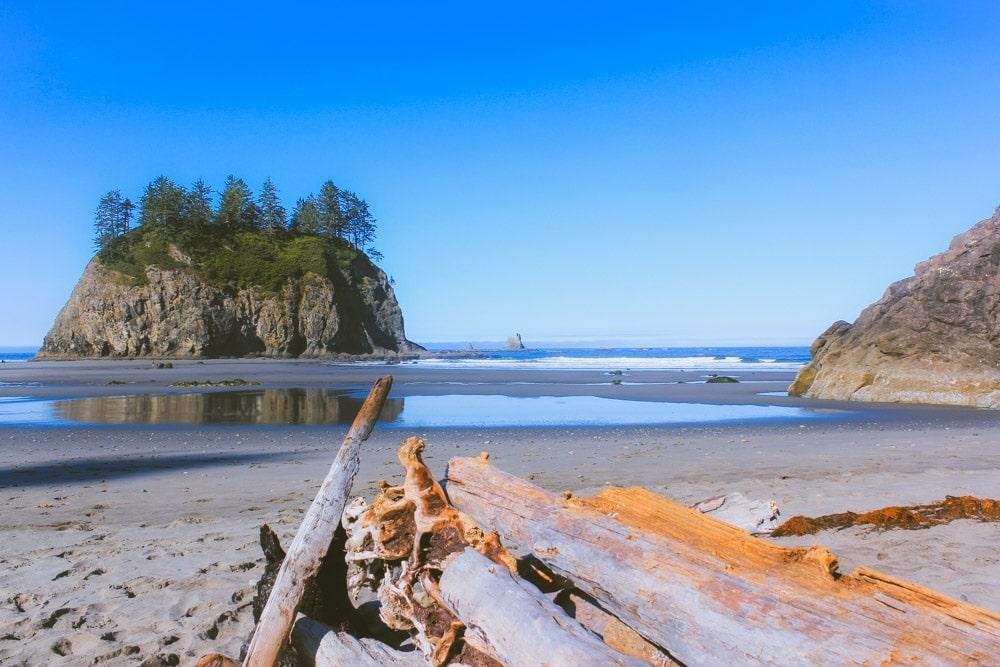 The sea stack at Second Beach rises out of the ocean with driftwood in the foreground.