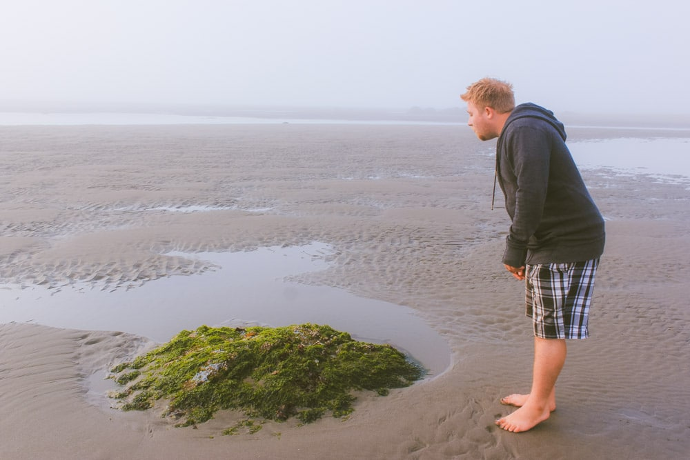 Jacob from Explore the Map checks out a piece of seaweed on the beach.