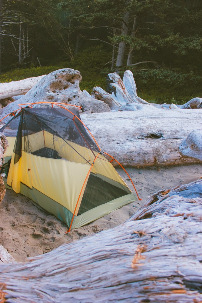 A tent nestled in the driftwood at Second Beach with the forest in the background.