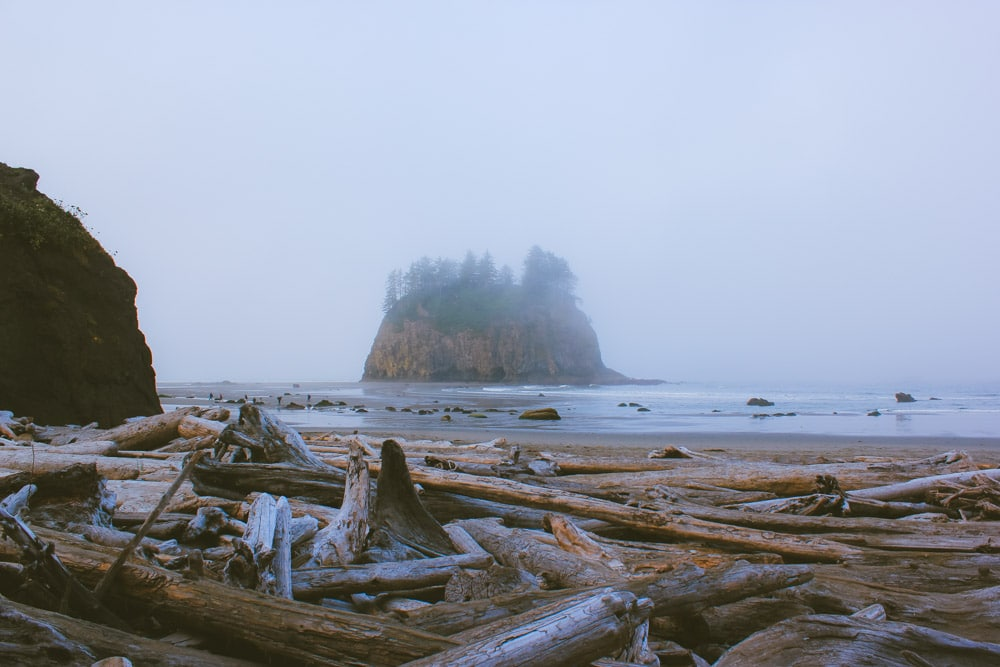 A sea stack at Second Beach on the Pacific Ocean covered in mist with driftwood in the foreground.