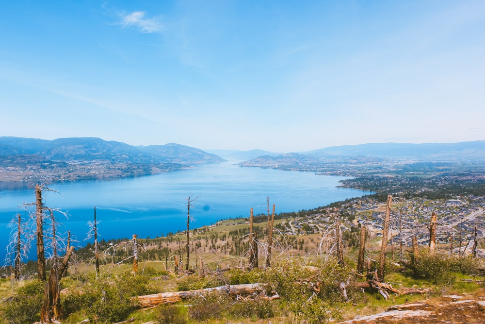 View from the summit of the Johns Family Nature Conservancy hike in Kelowna, looking south down the Okanagan valley.