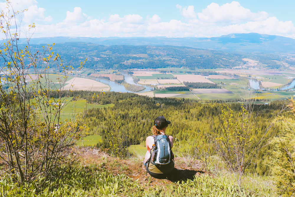 View of the Okanagan Valley from the Larch Hills Lookout on the Enderby Cliffs