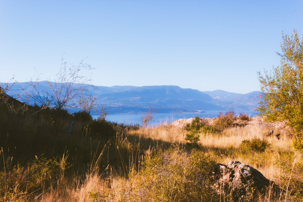 Okanagan Lake peaks out from between a dry grassy hillside.