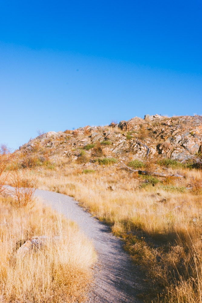 A grassy hillside with a gravel trail.