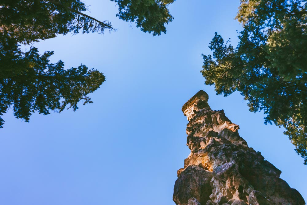 A 60-foot rocky column and tall trees against a blue sky backdrop.