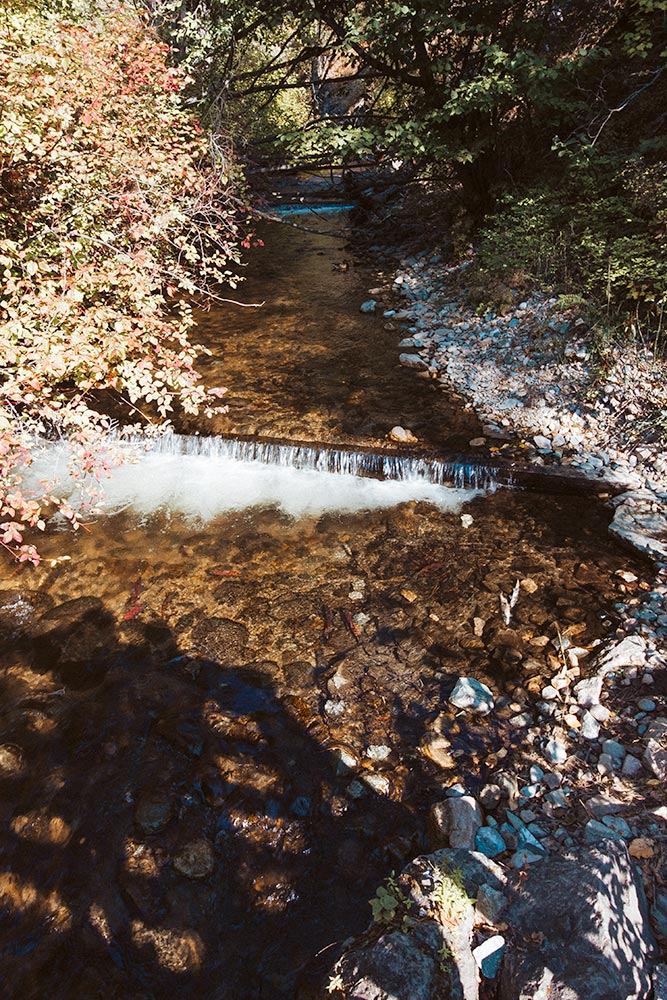 Weirs for salmon on Peachland Creek