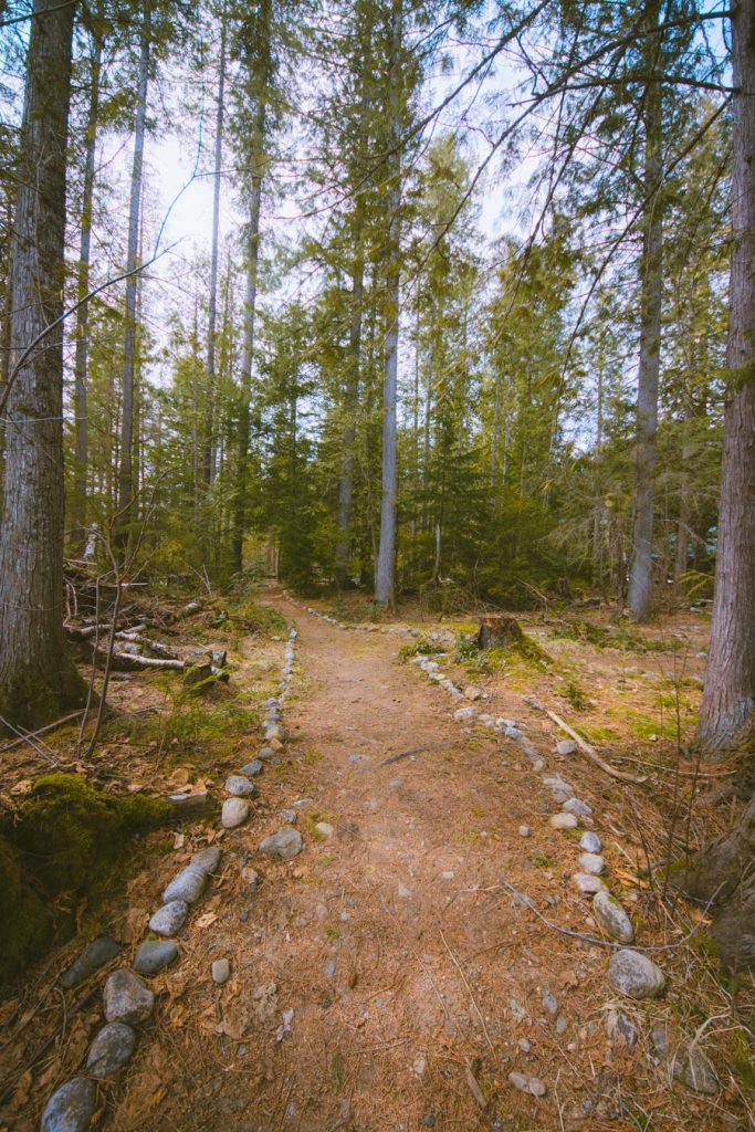 The lined pathway of the self-guided nature walk at Kingfisher Interpretive Centre