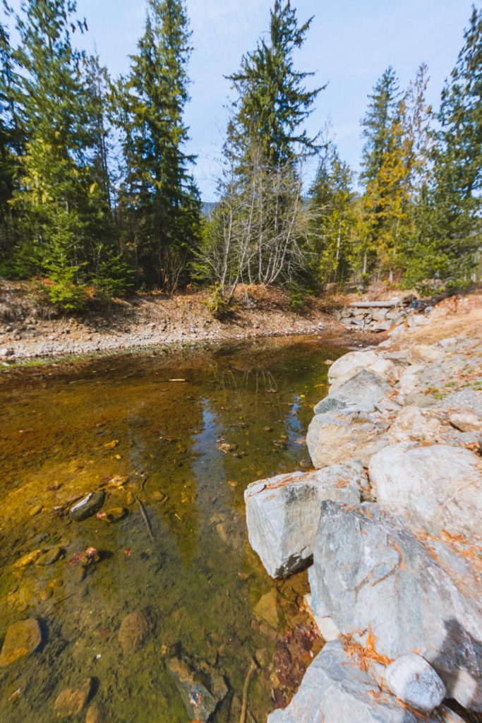 The trout pond at the Kingfisher Interpretive Centre